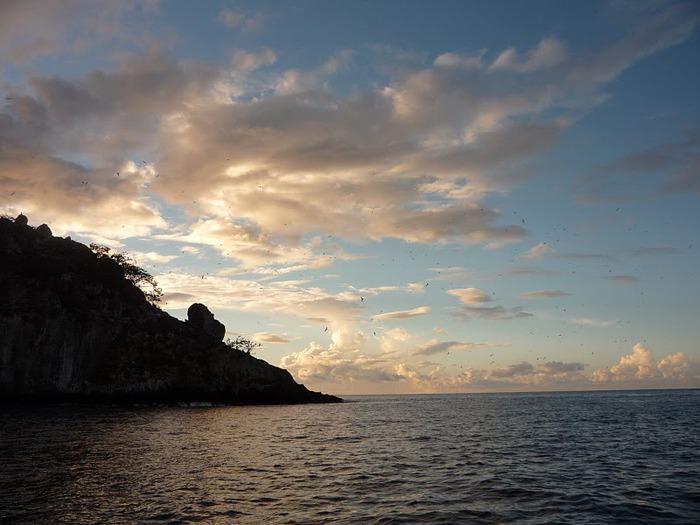 Остров Кокос 79478