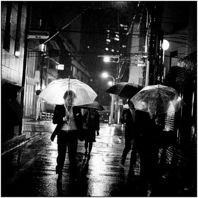 33 великолепных фотографии дождя