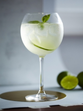 Koktejl-Martini-Royale_groot (276x367, 47 Kb)