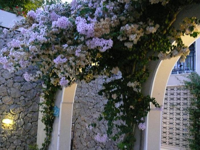 Корфу - «остров вечных возвращений». 49783