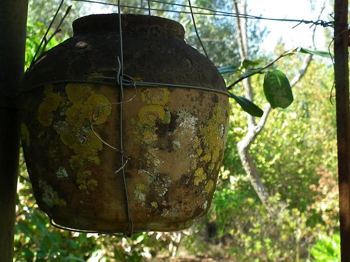 Корфу - «остров вечных возвращений». 36262