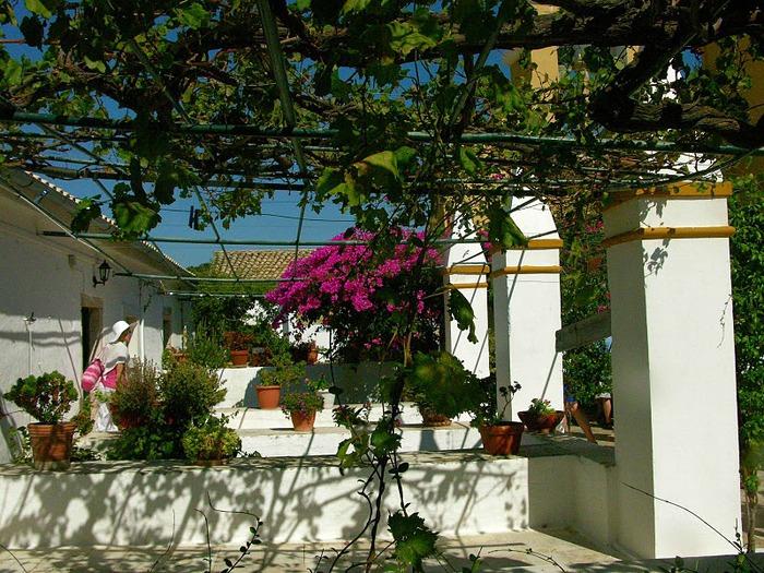 Корфу - «остров вечных возвращений». 64279