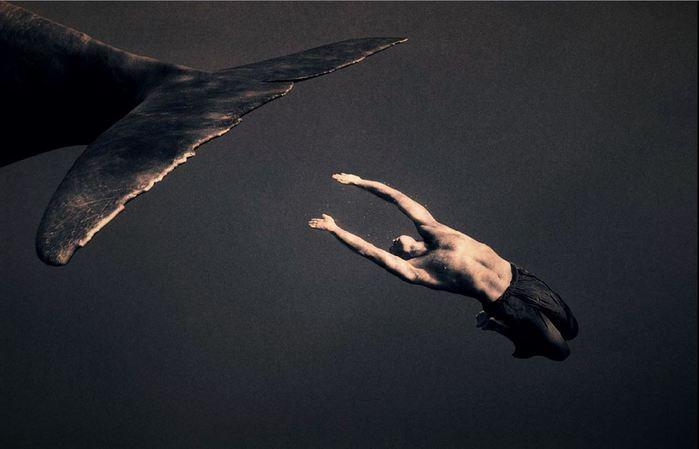 Парень плывет за китом