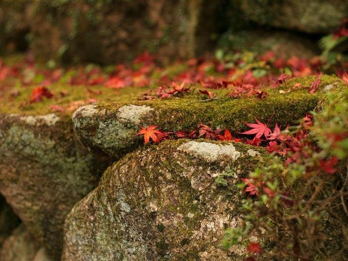 50 великолепных пейзажей Японии 15