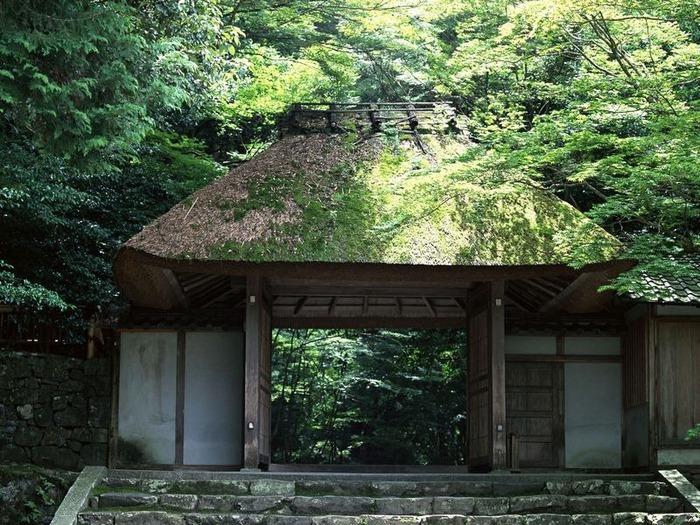 50 великолепных пейзажей Японии 36