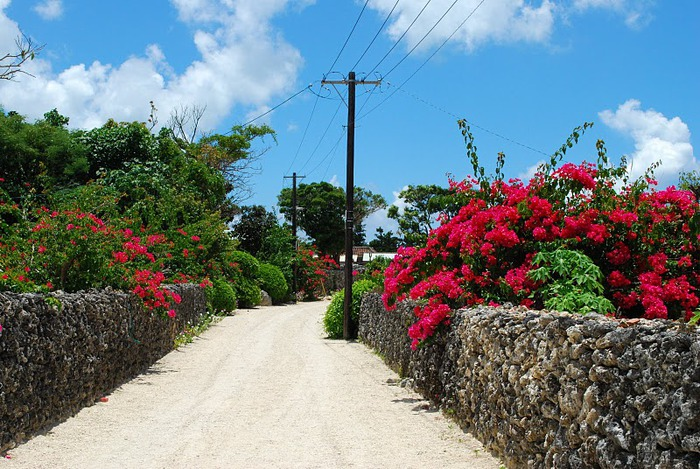 Taketomi Island - Остров Такетоми 45754