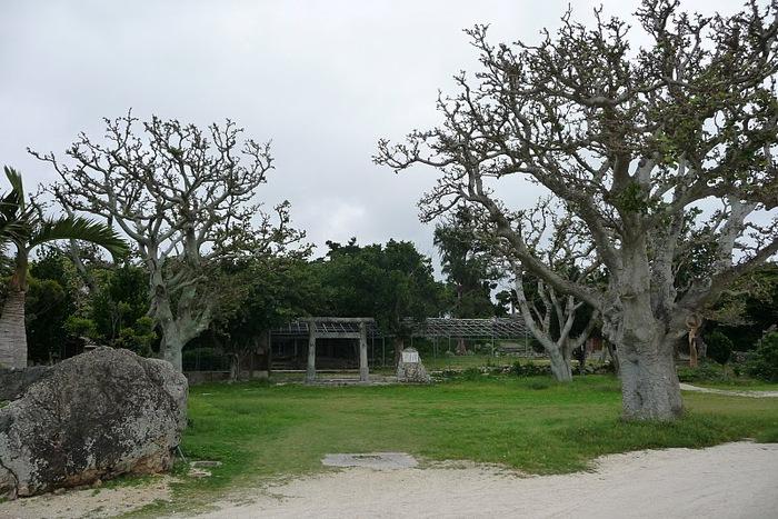 Taketomi Island - Остров Такетоми 47821