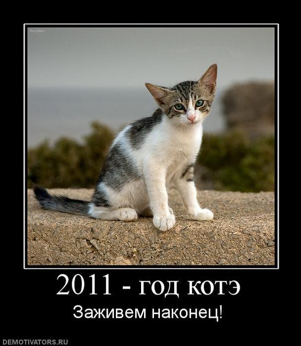 новый год 2011 фото