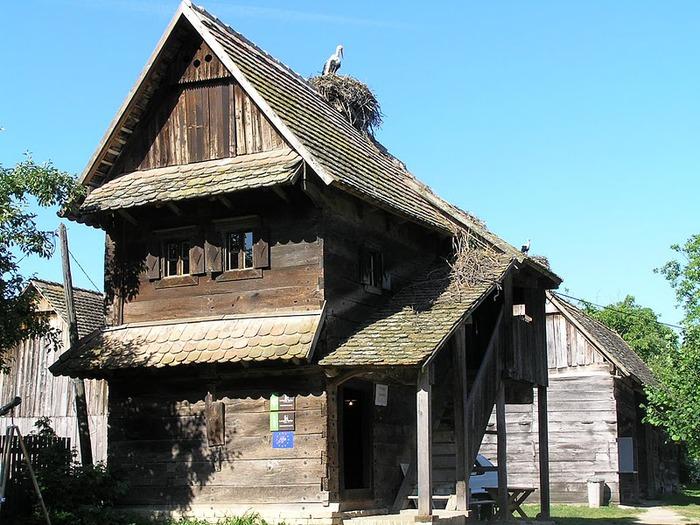 Деревянные дома в заповедном болоте - «Лоньско поле» 91613