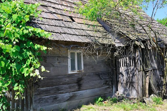 Деревянные дома в заповедном болоте - «Лоньско поле» 16835
