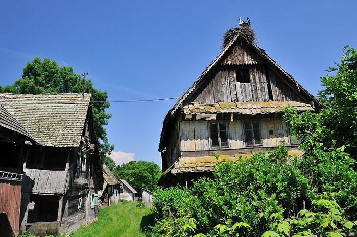 Деревянные дома в заповедном болоте - «Лоньско поле» 37972