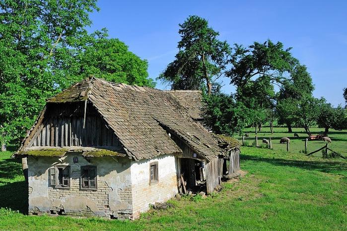 Деревянные дома в заповедном болоте - «Лоньско поле» 92075