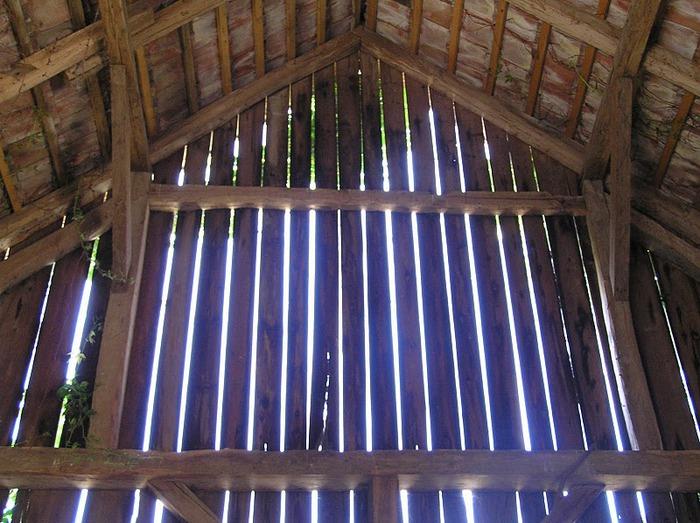 Деревянные дома в заповедном болоте - «Лоньско поле» 94875