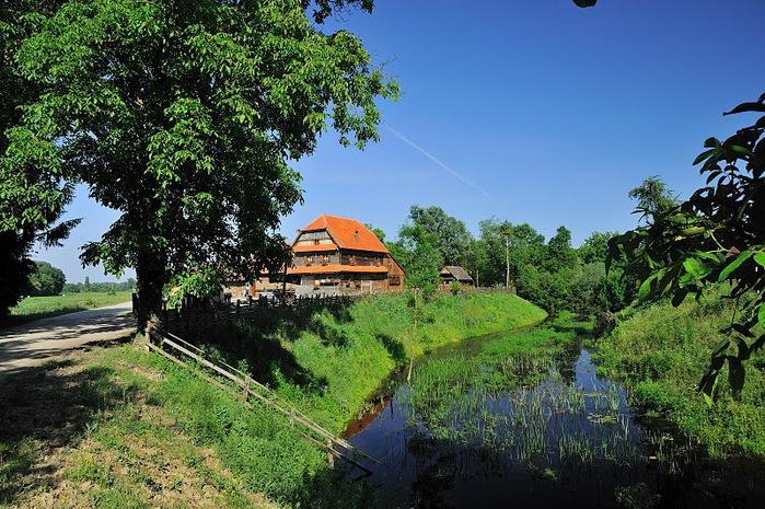 Деревянные дома в заповедном болоте - «Лоньско поле» 32738