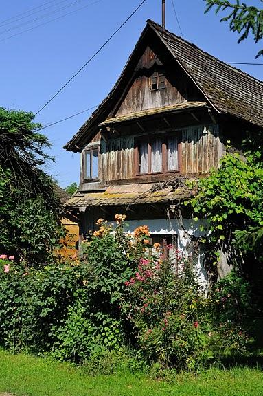 Деревянные дома в заповедном болоте - «Лоньско поле» 21108