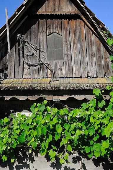 Деревянные дома в заповедном болоте - «Лоньско поле» 83811