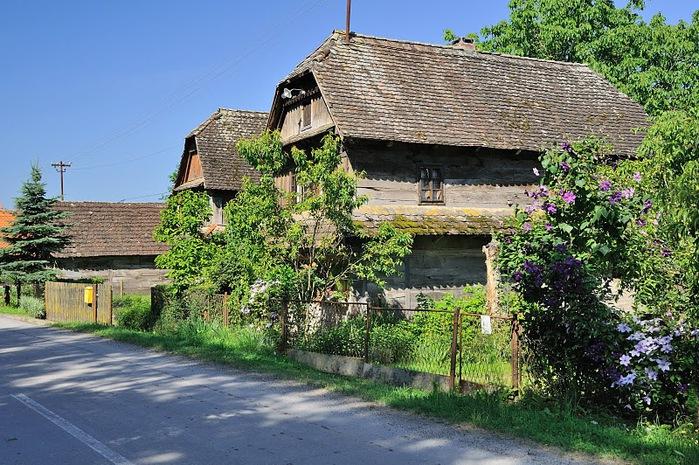 Деревянные дома в заповедном болоте - «Лоньско поле» 45551