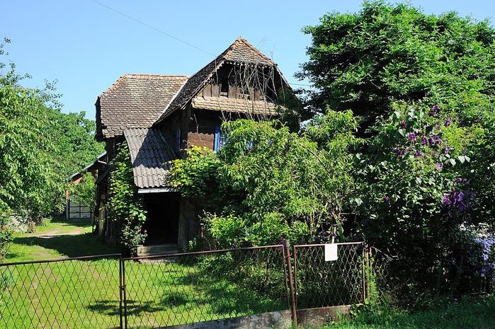 Деревянные дома в заповедном болоте - «Лоньско поле» 52954
