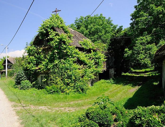 Деревянные дома в заповедном болоте - «Лоньско поле» 81315