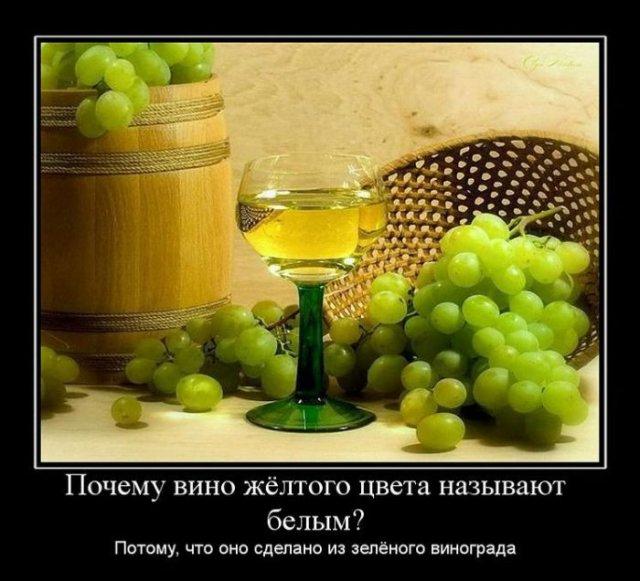 http://img0.liveinternet.ru/images/attach/c/2//68/883/68883173_3cbb0660a8760fafd952fcabffa97590.jpg