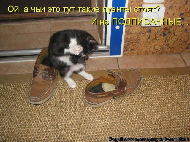 http://img0.liveinternet.ru/images/attach/c/2//69/587/69587401_8e40f3a766f7f317036ca7138918d691.jpg