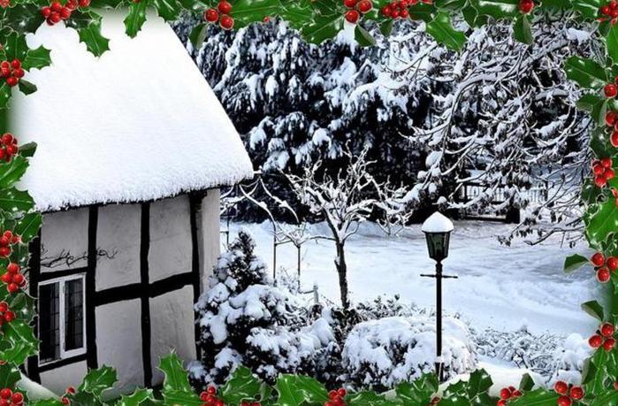 В снегу (699x459, 88 Kb)