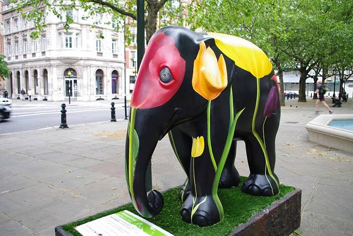 Парад Слонов в Лондоне 2010 65630