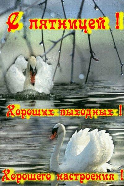 http://img0.liveinternet.ru/images/attach/c/2//70/510/70510657_s_pyatnicey1.jpg