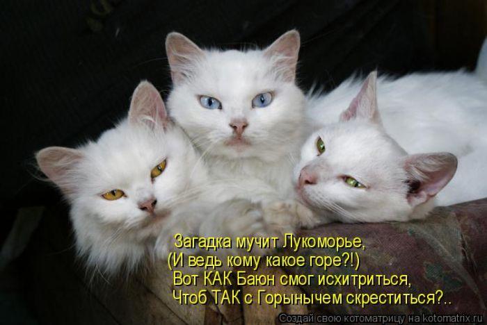 (700x468, 47Kb)