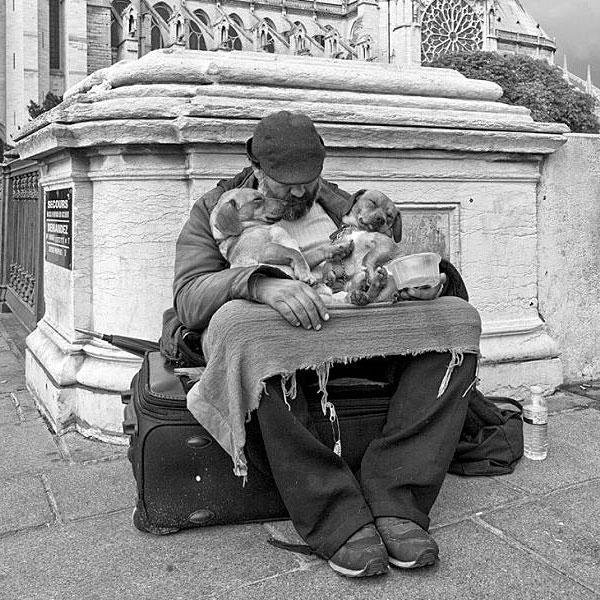 Любовь важнее денег (три фото)