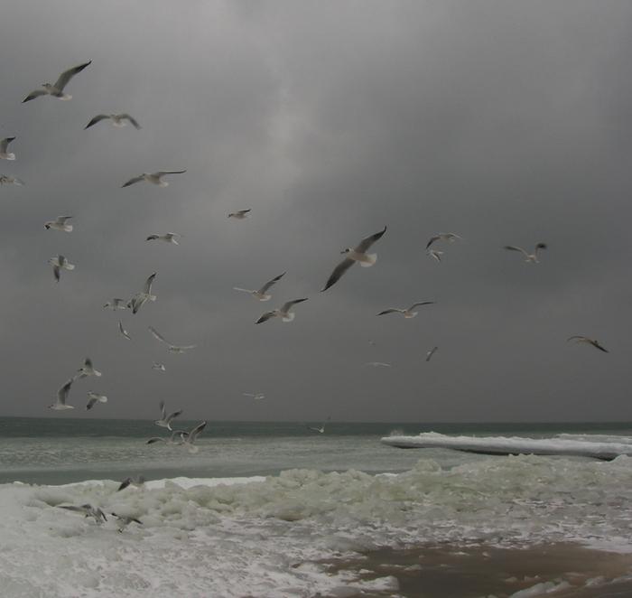одесса море замерзло, одесса море, под одессой море замерзло