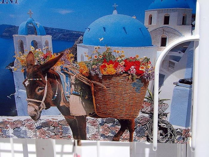 Остров Санторини – вулканическая красота. 71484
