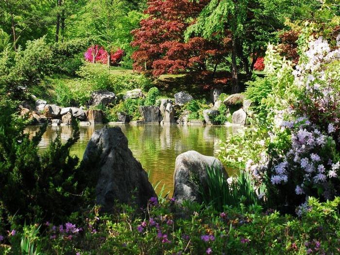 весенние пейзажи 28