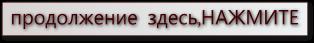 (314x43, 15Kb)