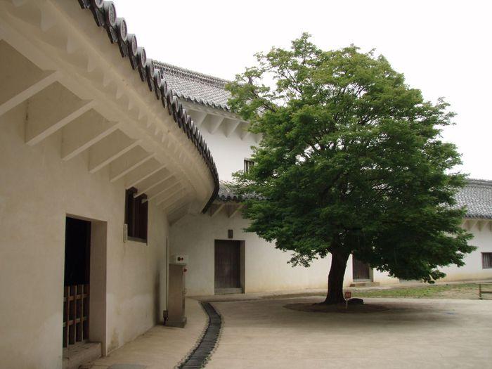 Замок Химедзи - Himeji Castle 67482