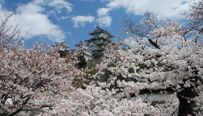 Замок Химедзи - Himeji Castle 56495
