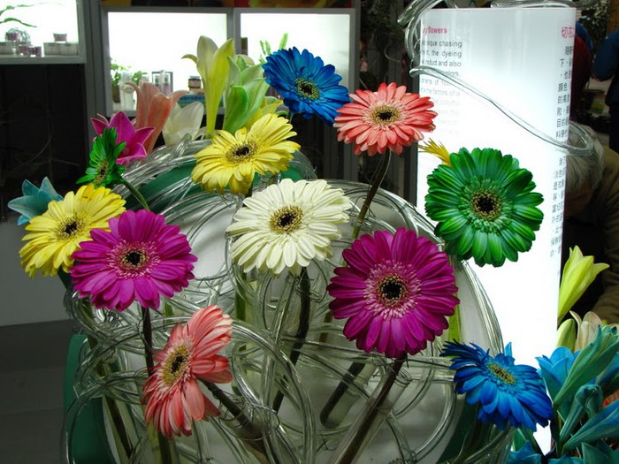 цветочный хоровод 40108