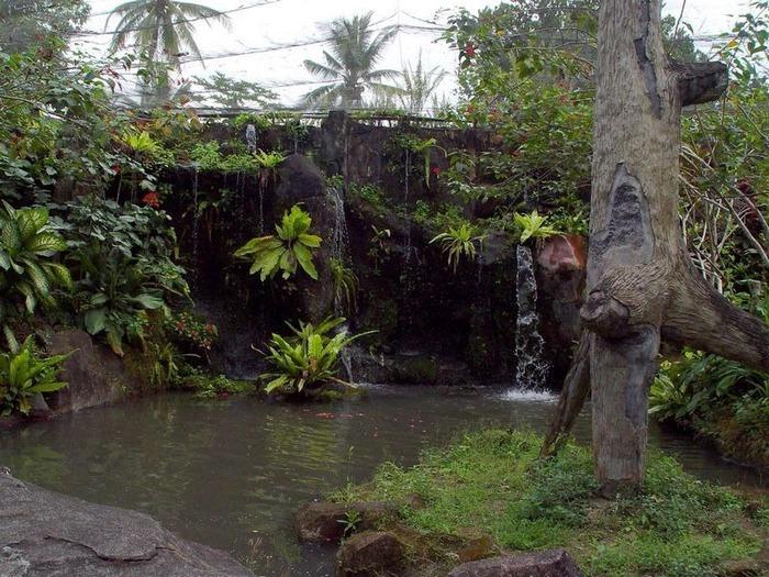 Фотопутешествие по Бали 28