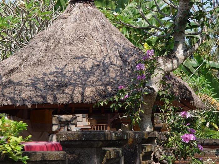 Фотопутешествие по Бали 57
