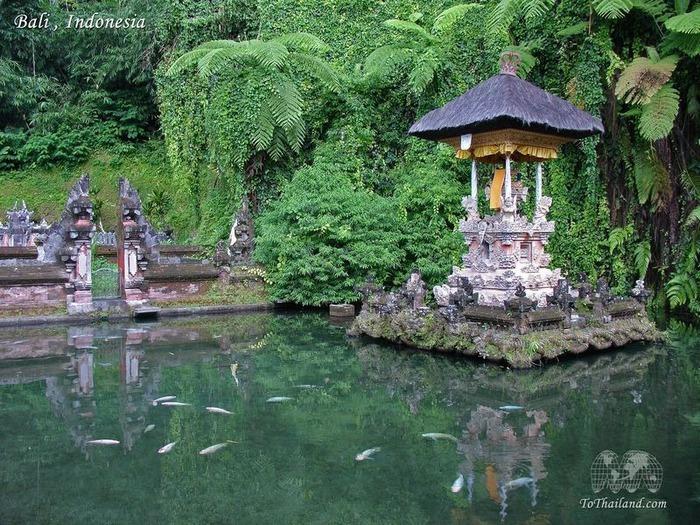 Фотопутешествие по Бали 81