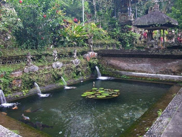 Фотопутешествие по Бали 82