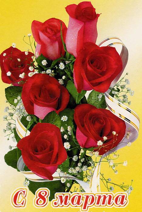 8-marta-rozy (468x699, 186 Kb)