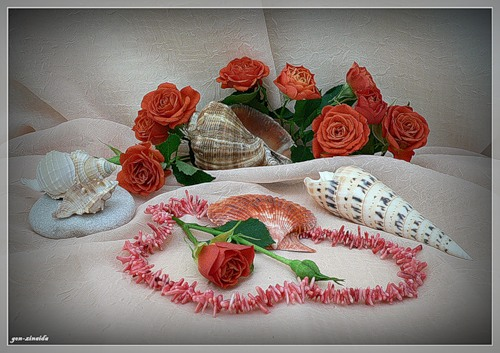 Коралл Цветок моря