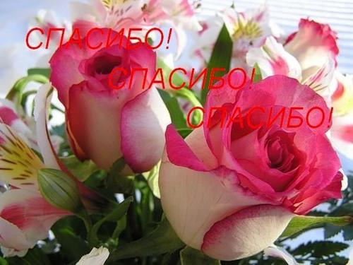 0_3aaac_f43322f8_L (500x375, 54 Kb)