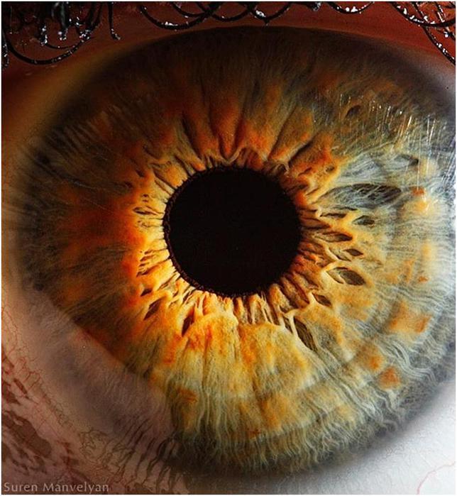 Экстремально крупные снимки человеческого глаза (неожиданные макрофотографии)