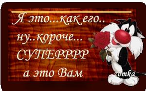 0_47576_85b28ca2_M (300x188, 98 Kb)