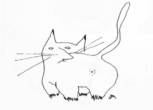 Макаревич кот