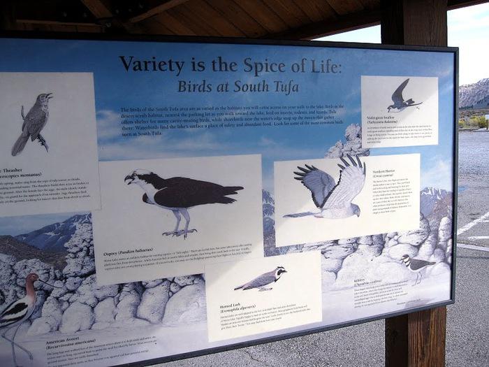 Озеро Моно - Mono Lake, 18005
