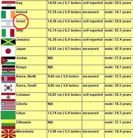 Средний размер член в мире