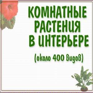 растения2 (300x300, 27 Kb)